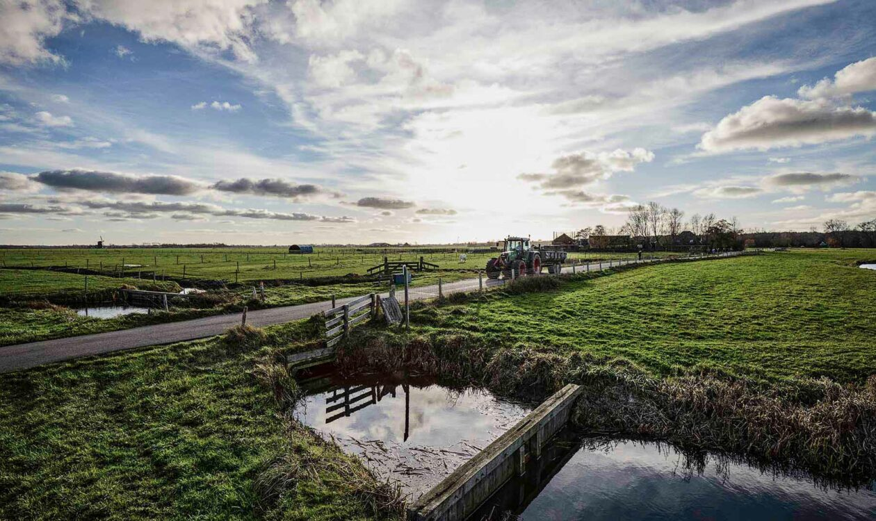 Weiland met water en weggetje in Noord Holland
