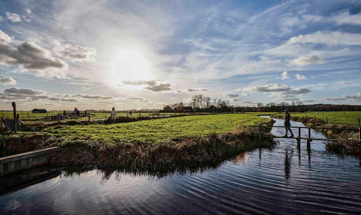 Weiland met bruggetje en wandelaar met water, blauwe lucht en zonnetje in Noord Holland