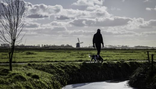 Wandelaar in ommeland Noord-Holland