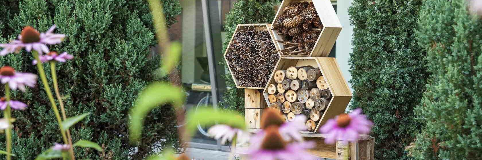 Insectenhotel in tuin met beplanting en bloemen