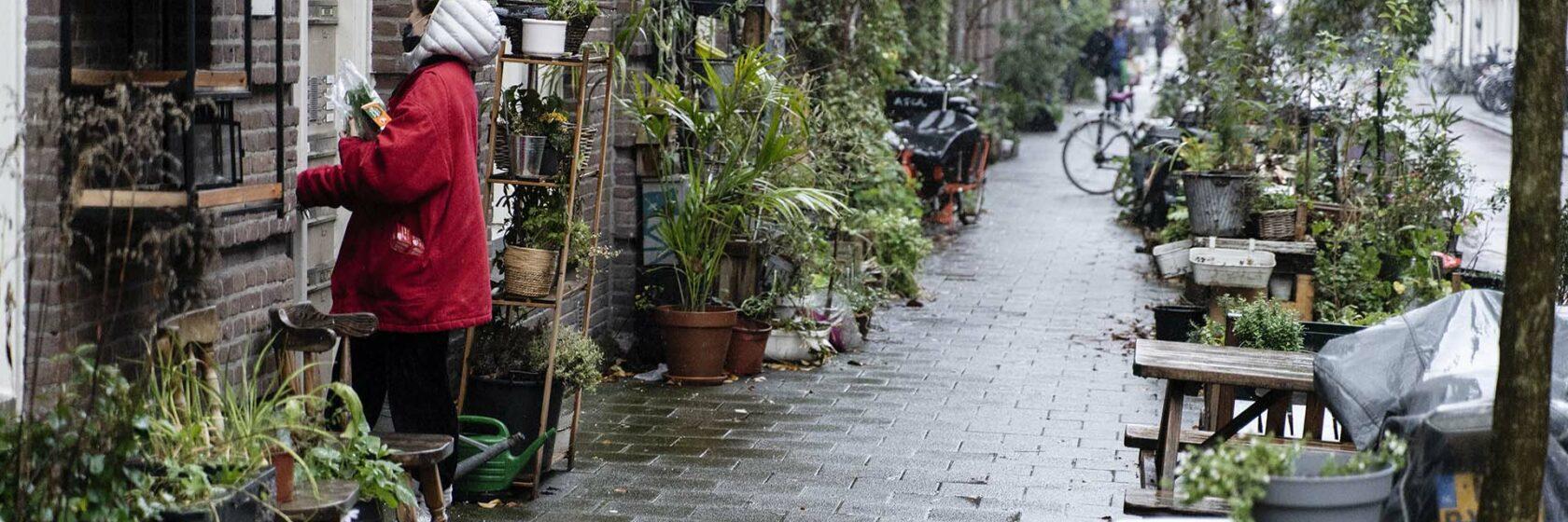 stadwijk met veel beplanting en groen