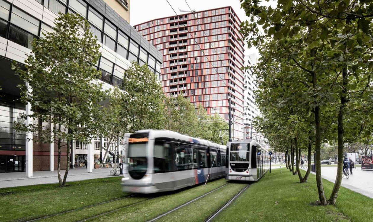 Twee trams tussen de bomen bij de Delftse Poort in Rotterdam