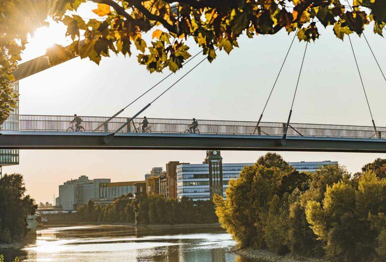 Brug met fietsers in gebied met water, gebouwen en veel groen in Düsseldorf, Duitsland
